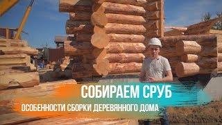 Собираем сруб Особенности сборки деревянного дома