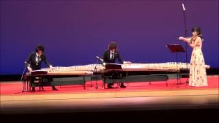 2016年11月5日野田市文化祭 葉加瀬太郎が作曲した曲を竹内智樹が編曲し...