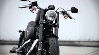 Harley-Davidson ROADSTER STYLING 2016 #HarleyDavidson #Roadster #HarleyRoadster #2016