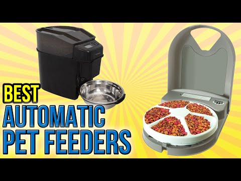 7 Best Automatic Pet Feeders 2016