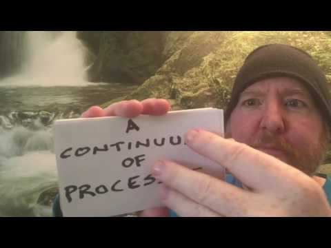 What is Consciousness? (Reflexive Monism)