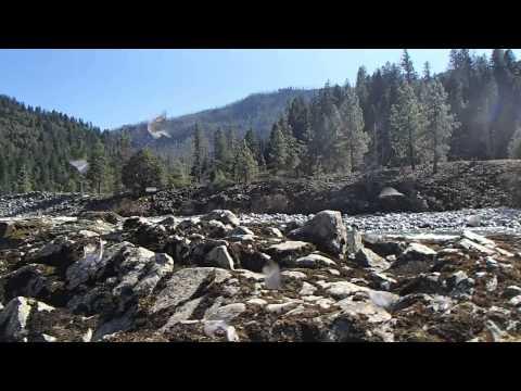 Kalmiopsis Wilderness-Pine Flat-Spring