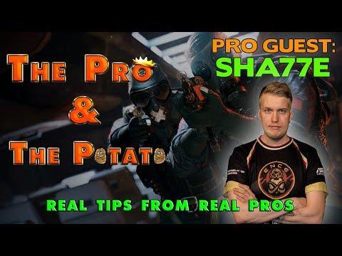 The Pro & The Potato || The Sha77e Episode