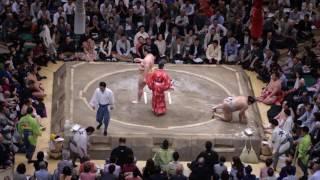 平成29年5月場所11日目取組結果一覧 (外部サイト:Sumo Reference) ht...