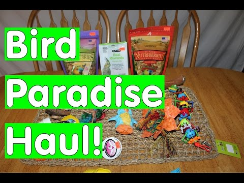 Bird Paradise HAUL! and NEWS ABOUT OUR 4TH PARROT!!!