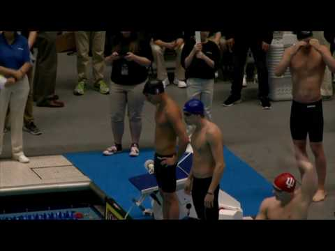 Men's Swimming: 2017 NCAA Division I Championships - Day 2 Highlights - 03/23/17