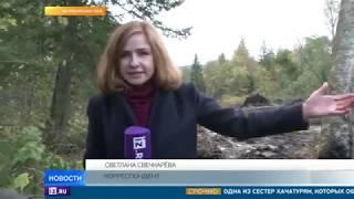 На границе Челябинской области и Башкирии образовался гигантский провал