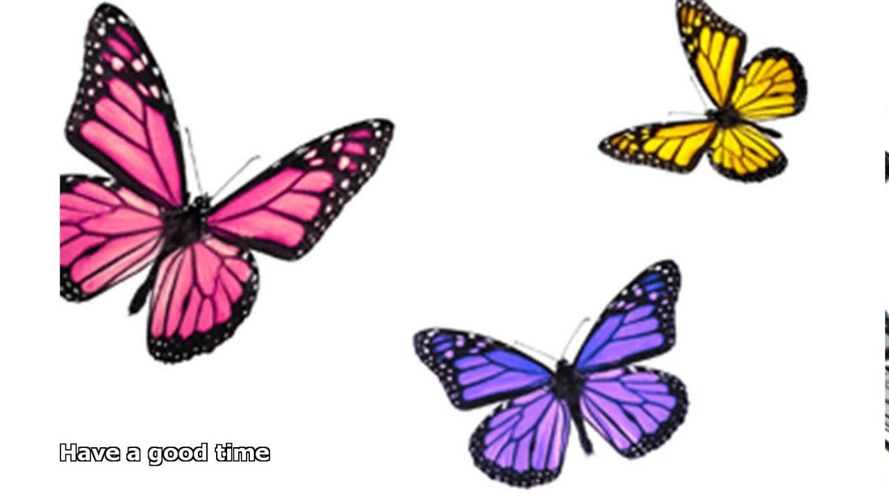 Uncategorized Butterfly Images For Kids butterfly facts for kids youtube kids