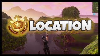 Fortnite: Search Between a Bench, Ice Cream Truck and a Helicopter Location