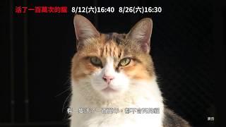 【活了一百萬次的貓】府中15新北市紀錄片放映院 :2017年八月主題【萌獸大進擊】