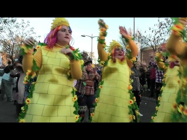 2º Premio Carnavales 2019