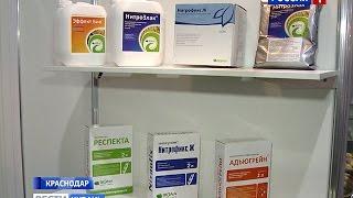 От химии к биологическим препаратам