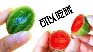 切开世界上最小的迷你西瓜!cutting open world's smallest watermelon! thumbnail