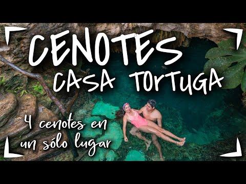 4 CENOTES TULUM $400 MXN 🔴 CENOTES CASA TORTUGA ► CENOTES baratos en Riviera Maya, Playa del Carmen
