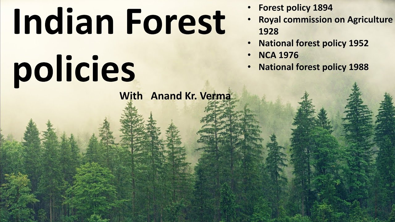 Privacy policy · disclaimer · terms of use · sitemap · sale condition · downloads. Forest Policy Indian Forest Policies B Sc Agriculture Semester 1 Youtube