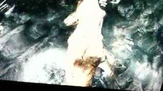 Zoophilia in Skyrim