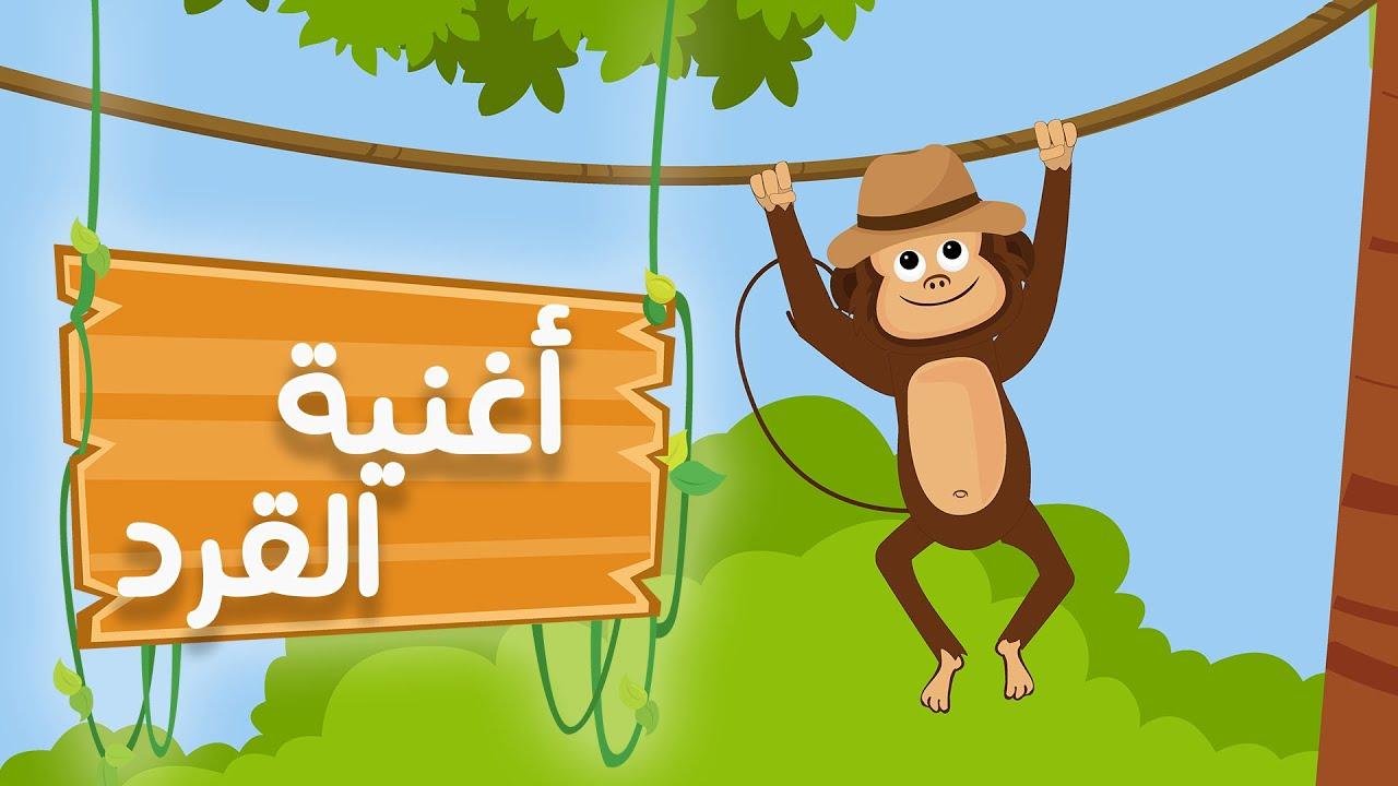 عالم مرح: أغنية القرد في الأدغال | Monkey song