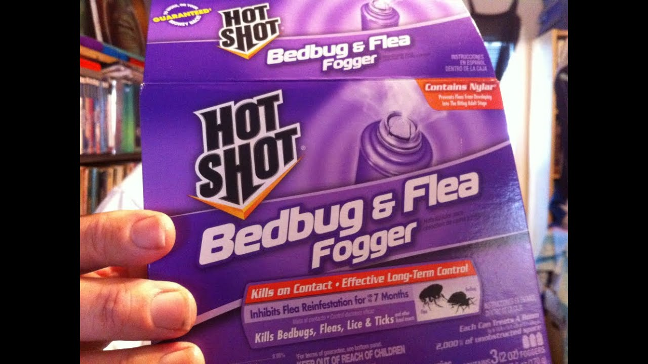 how to bomb for bedbugs, fleas, lice & ticks (live demonstration