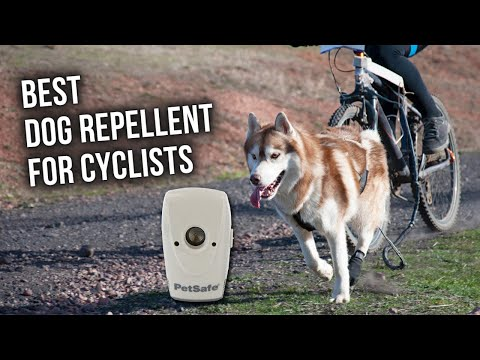 Best Dog Repellent For Cyclists - Top Ultrasonic Repellent Of 2019