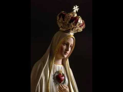 mary-immaculate,-star-of-the-morning