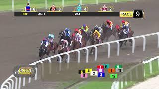 Vidéo de la course PMU PRIX COURSE 09