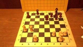 Урок по шахматам #5 Нападение и защита