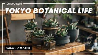 TOKYO BOTANICAL LIFE - vol.6 アガベの沼へ、ようこそ。