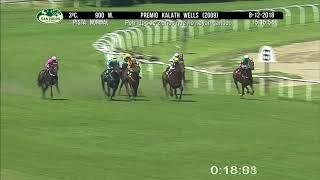 Vidéo de la course PMU PREMIO KALATH WELLS 2009