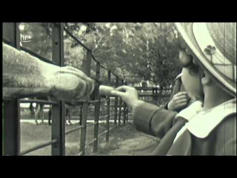 Filme von gestern - Hessen 1933 bis 1945