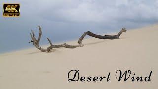 Desert Wind Sound of 1 Hour   Stress Relief   Meditate - Sleep - Study   Beautiful Desert Winds - 4K