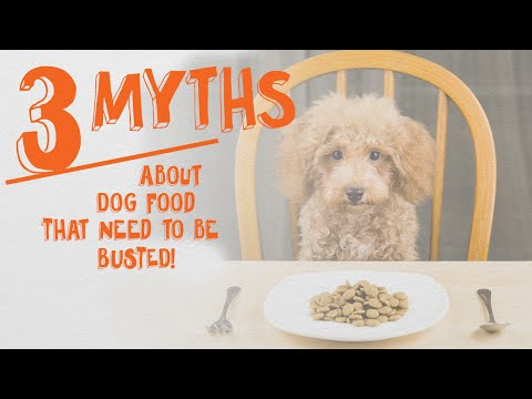 3 Dog Food Myths That Need To Be Busted