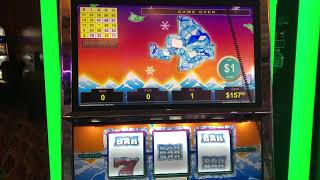 "VGT Slots Lucky Ducky Polar High Roller""LIVE HANDPAY""  Champaign Glass Bingo Pattern Choctaw, Durant"