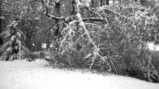 Hurricane Sandy/Nor'easter Snow