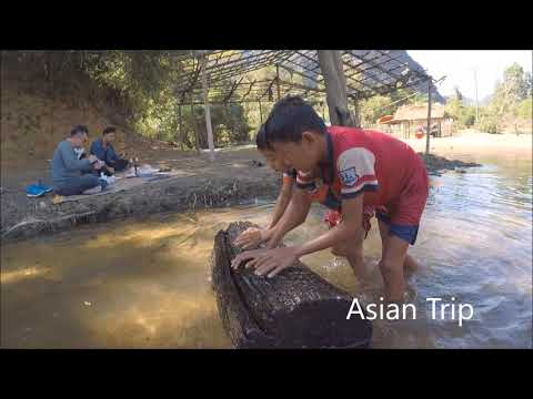 Laos , Local Travel 2018