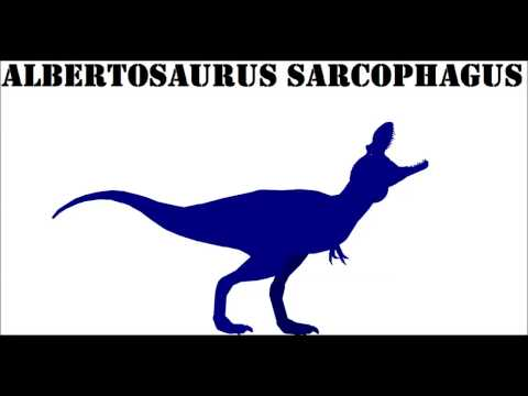 Dinosaur Championship Albertosaurus VS Daspletosaurus
