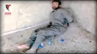 Сирия - боевые действия (Syria)