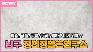 울산맛집 정의정발효연구소 / 소금 / 눈꽃소금 / 요리…