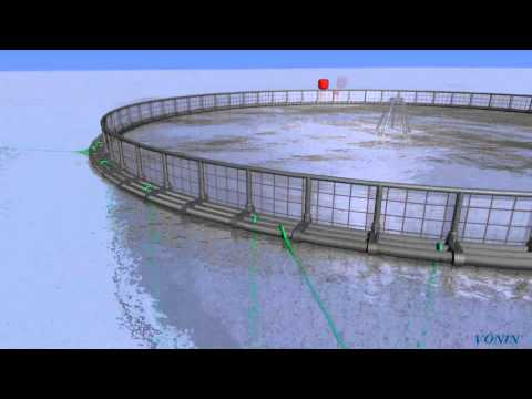 Fish Farming System In 3D
