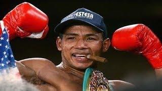 Ricardo Mayorga - Highlights / Knockouts