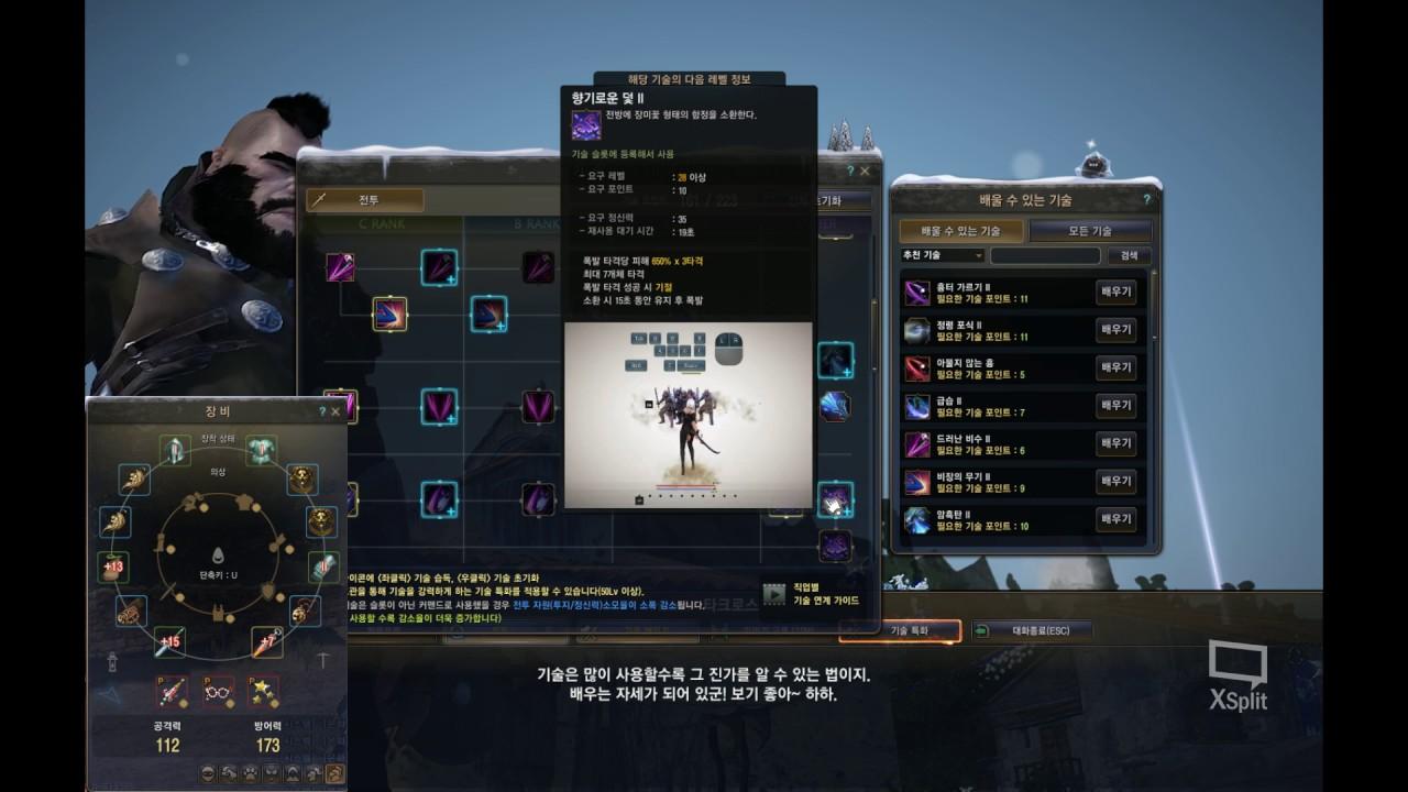 Dark Knight Skill Build Black Desert