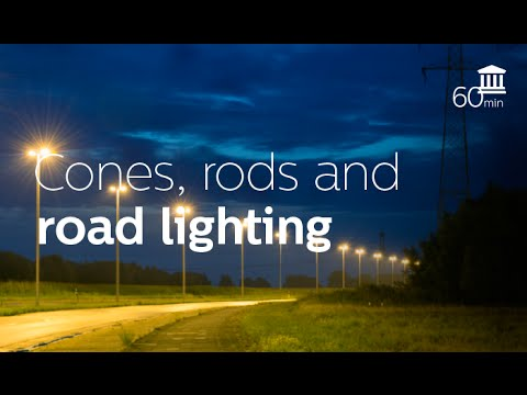 Mesopic Vision and Road Lighting the real story (Wout van Bommel)