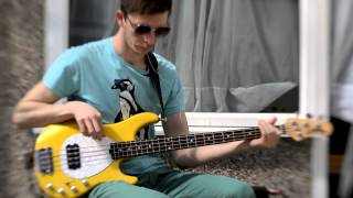 Jackson 5 - Blame it on the boogie (bass cover)