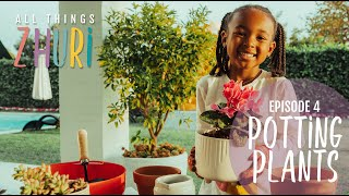 Potting Plants at home with Zhuri!