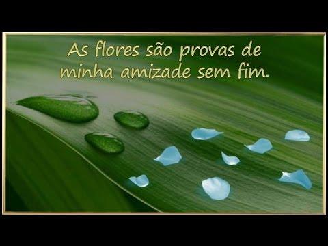Flores para você - Bela mensagem