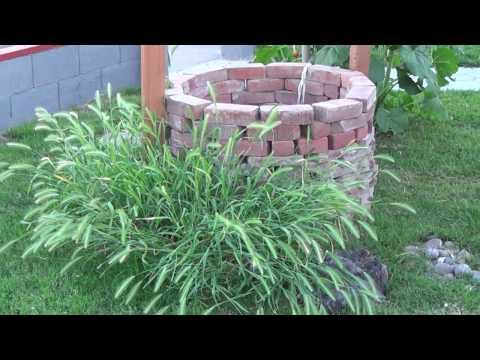 caribbean's garden landscaping