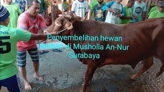 Penyembelihan hewan kurban di musholla annur dupak jaya 6 surabaya 1441H