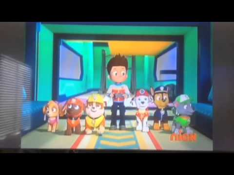 Paw Patrol The New Pup Everest