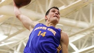 Nemanja Nedovic - Highlights of 2013-14 NBA D-League Season