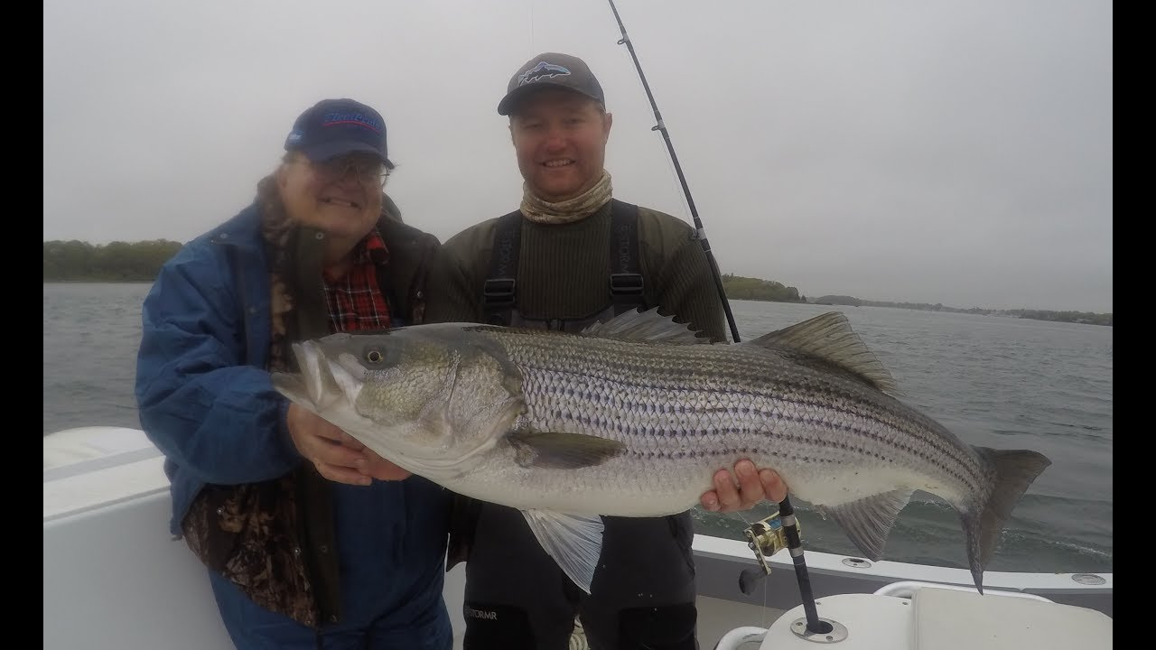 Falmouth ma fishing report june youtube for Ma fishing report