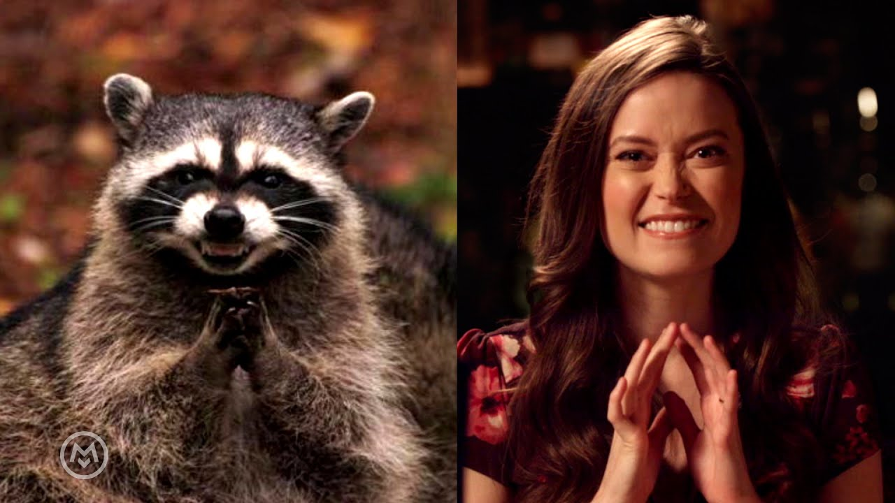 Summer Glau Imitates Popular Animal Memes Speakeasy